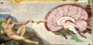 Creazione di Adamo, Cappella Sistina, Michelangelo